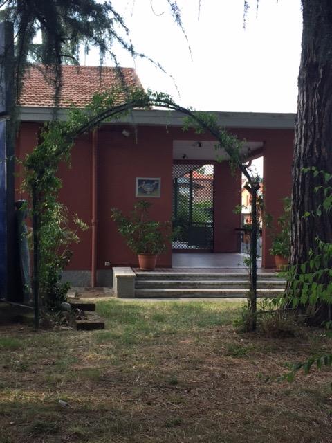 giardino intorno alla chiesa, particolare